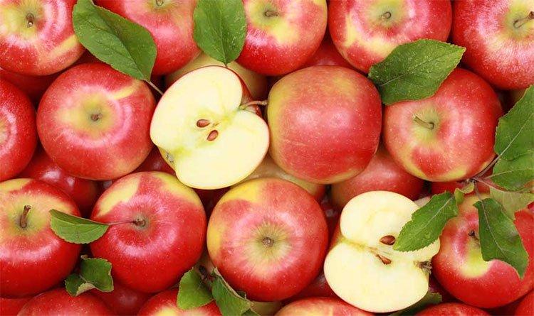 Mỗi ngày ăn hai quả táo sau ba tuần mức chất béo trung bình trong máu sẽ giảm 21%.
