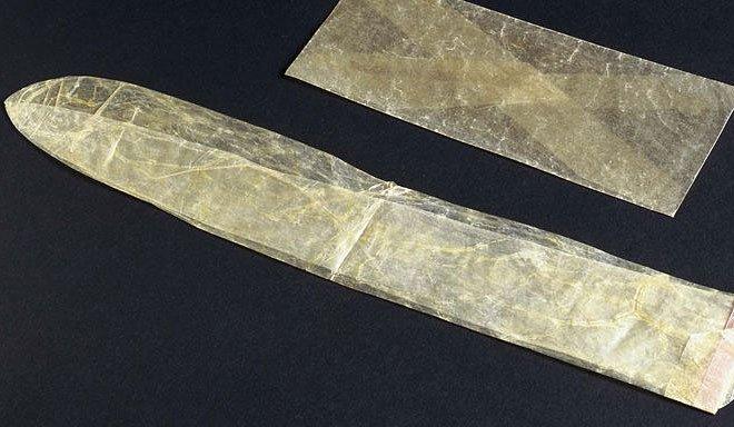 Bao cao su làm từ ruột động vật, đầu thế kỷ 19.
