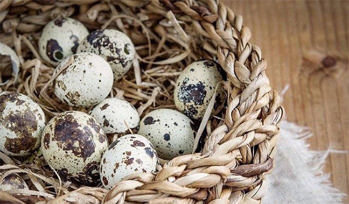 Trứng cút được xem là