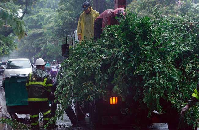 Cảnh công nhân thu dọn cây đổ xuất hiện nhiều nơi ở Hà Nội lúc 9h.