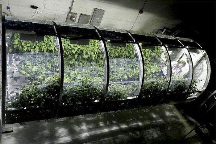 Nhà kính bơm hơi cho việc trồng trọt ngoài không gian.