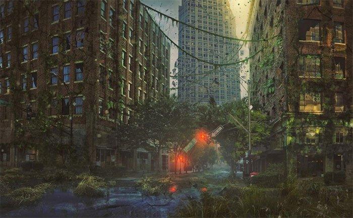Một khu đất bị cây xanh xâm lấn sau khi rơi vào tình trạng bỏ hoang sau nhiều năm.