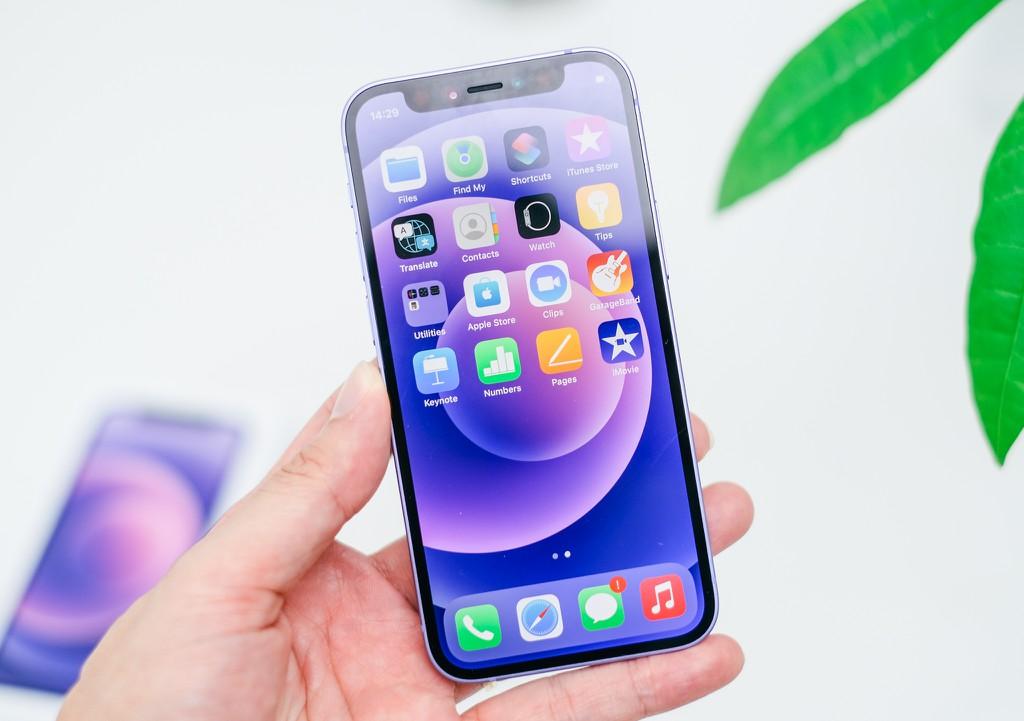 iPhone 12 màu tím là thiết bị đầu tiên sử dụng series ngẫu nhiên ảnh 1