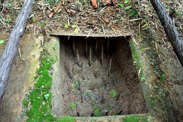 Hầm chông yếu là tre nứa vót nhọn, sau đó được tẩm phân hoặc chất độc chết người bên dưới.