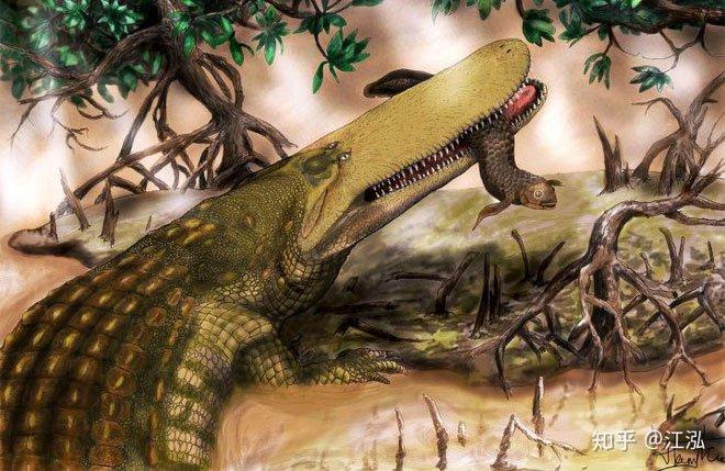 Cá sấu Stomatosuchus inermis có thân hình phình to, chân tay ngắn và cái đuôi dày đằng sau.