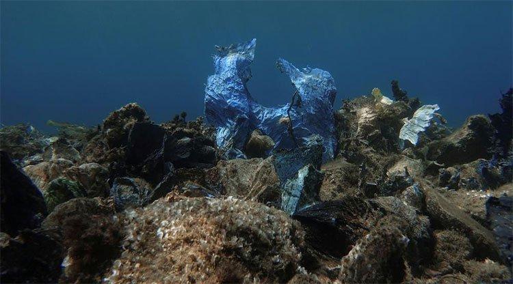 Một túi nhựa mắc vào kẽ đá và dần hòa thành cảnh quan nơi đây.