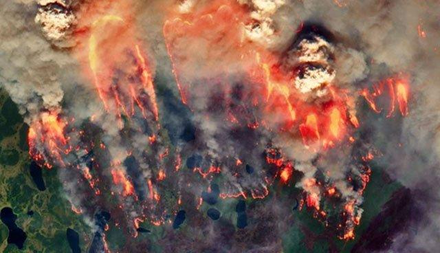 Lửa thây ma bùng cháy khắp Siberia mùa hè 2020.
