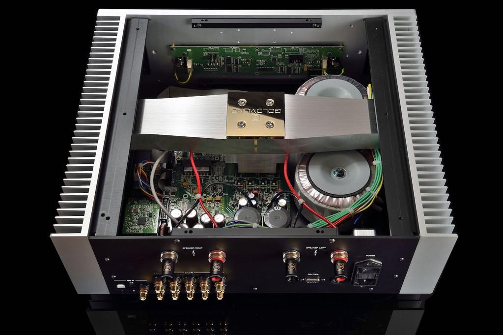 Goldmund Telos 590 NextGen II - Sức mạnh, sự vững chắc và mật độ âm sắc ở mức không tưởng ảnh 6