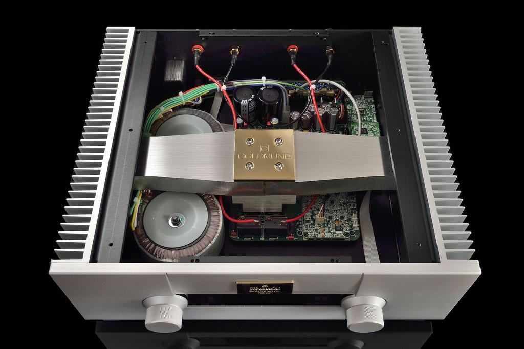 Goldmund Telos 590 NextGen II - Sức mạnh, sự vững chắc và mật độ âm sắc ở mức không tưởng ảnh 7