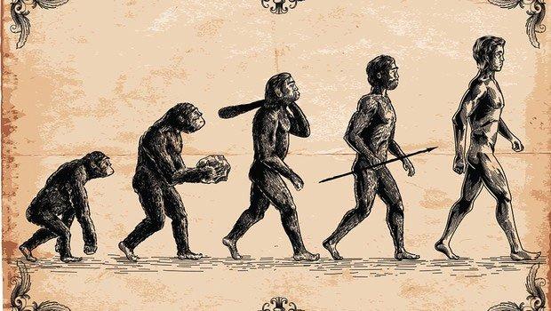 Bức vẽ nổi tiếng mang tên The March Of Progress mô tả quá trình tiến hóa của con người.