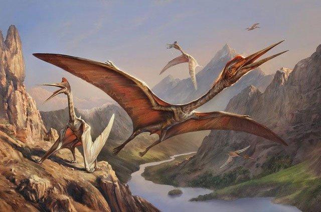 Loài thằn lằn này có thể bay cao tới 3000 đến 4500 mét và lao với tốc độ 80 dặm một giờ.