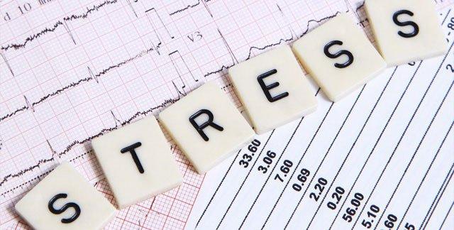 Tác hại chính của stress đối với da là kích thích các tuyến nhờn hoạt động mạnh, khiến da trở nên kém mịn màng.