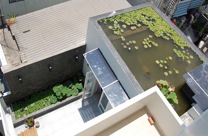 Xây hồ nước trên mái nhà để giảm nhiệt độ do mặt trời mang lại