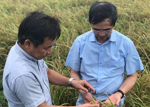 PGS Trần Đăng Xuân (trái) và Bác sĩ Đàm Duy Thiên (phải)