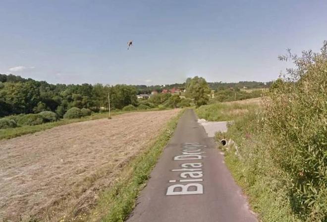 Google Street View ghi lại cảnh xe chụp hình đường phố đâm phải con thỏ lao qua đường - Ảnh 4.