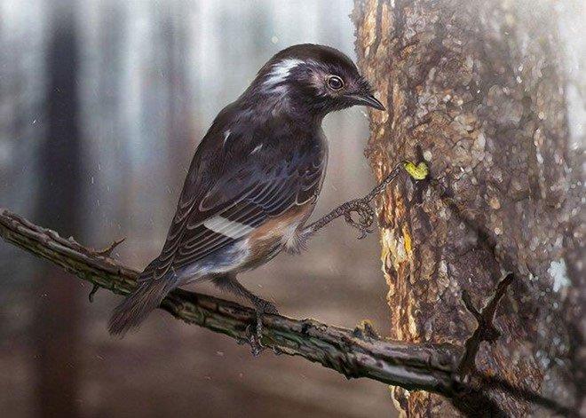 Loài chim này có thể đã dành phần lớn thời gian ở trên cây thay vì ở dưới nước hoặc trên mặt đất.
