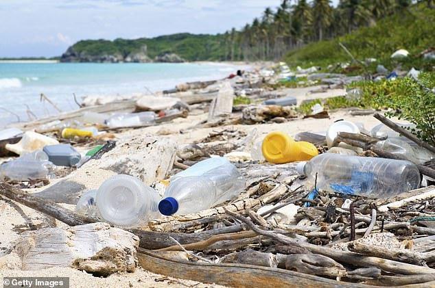 Rác thải nhựa dạt vào bờ.