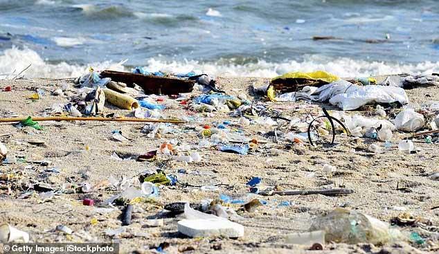 Chúng ta đang chuẩn bị có giải pháp xử lý vấn đề rác thải nhựa triệt để nhất.