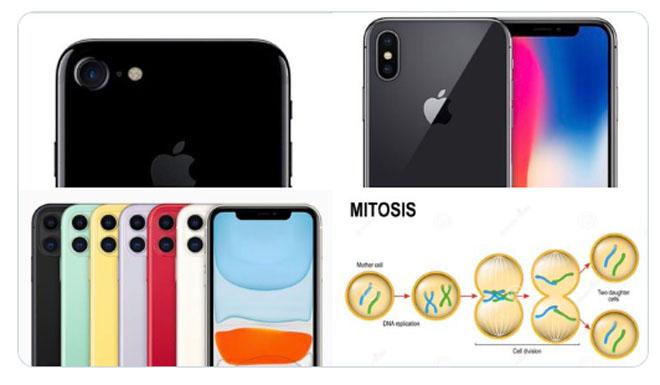 iphone 11 van bi dan mang