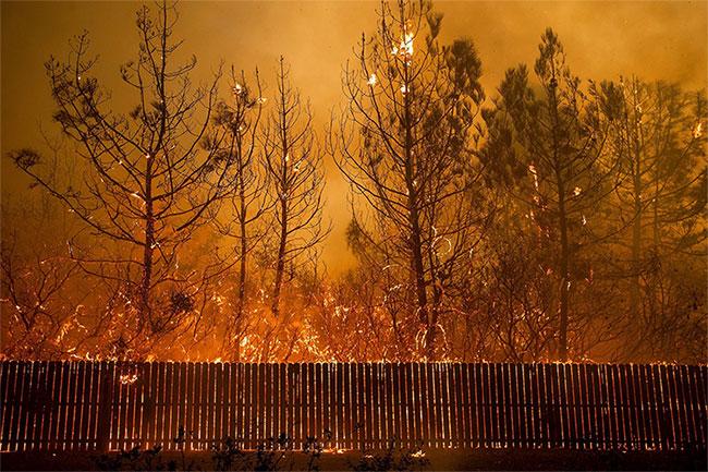 Dường như không có cách gì để ngăn ngọn lửa nuốt chửng mọi thứ trên đường đi của nó.