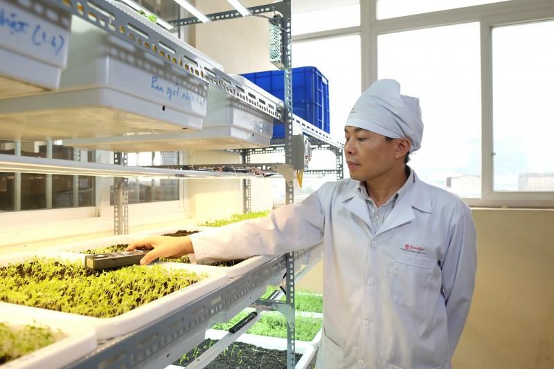 Thử nghiệm đèn LED chiếu sáng trong nông nghiệp ở Rạng Đông - một sản phẩm của dự án FIRST . Nguồn: Rạng Đông