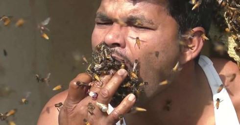 Hai hung nguoi dan ong