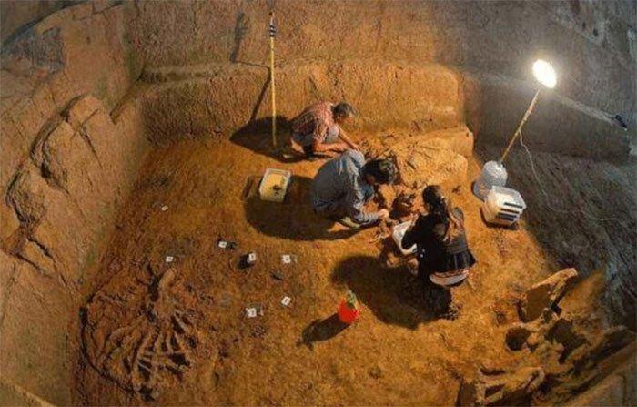Trong quá trình khai quật, một lọ nhỏ bằng sứ gây chú ý các chuyên gia khảo cổ.