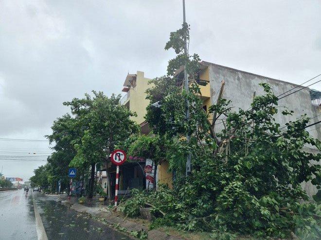 Bão số 5 đổ bộ gây mưa to gió giật kinh hoàng, cây gãy la liệt trên đường, nhiều nhà dân tốc mái