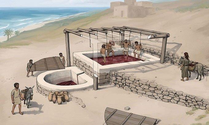 Khai quật được nhà máy rượu nho 2.600 năm tuổi