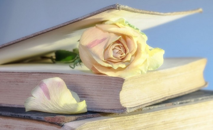 Ebook, Audiobook hay sách giấy: Hình thức đọc sách nào mới là tốt nhất?