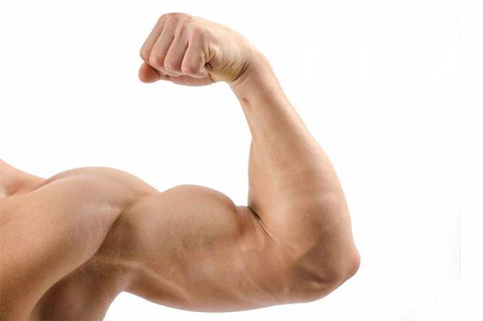 Liệu pháp gene này có thể giúp tăng khối lượng cơ bắp.