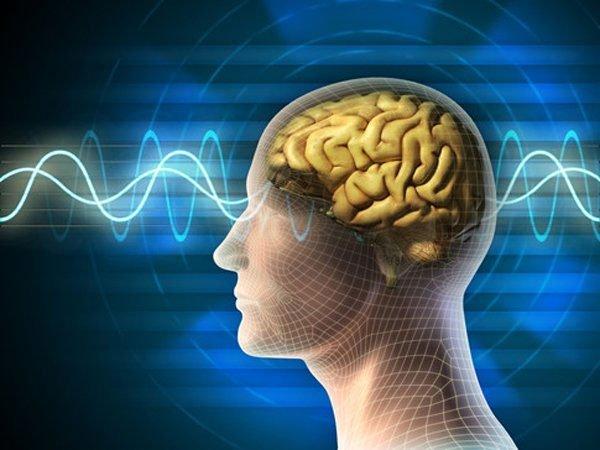 Ảnh hưởng ở thùy não có thể là nguyên nhân dẫn tới hội chứng