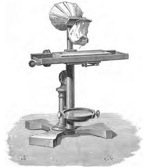 Minh họa máy ghi chấn động âm tai của Alexander Graham Bell và Clarence J. Blake.