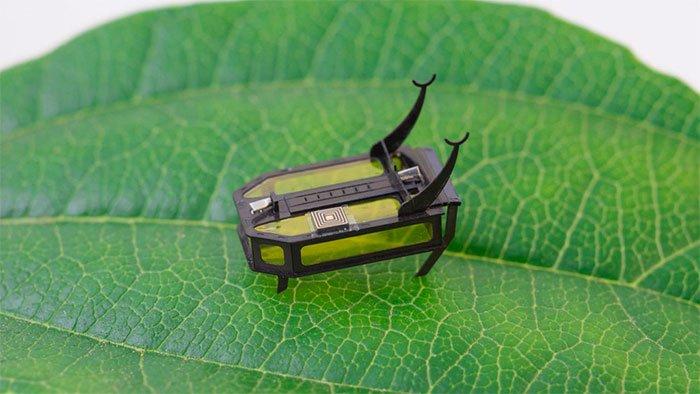 Robot bọ cánh cứng nhỏ chạy bằng methanol