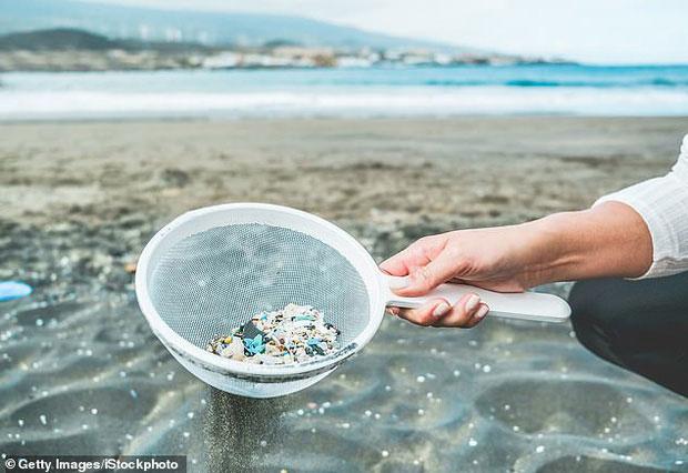 Hạt vi nhựa cực kỳ dễ lọt vào chuỗi thức ăn khi đến cả phù du cũng dung nạp nó.