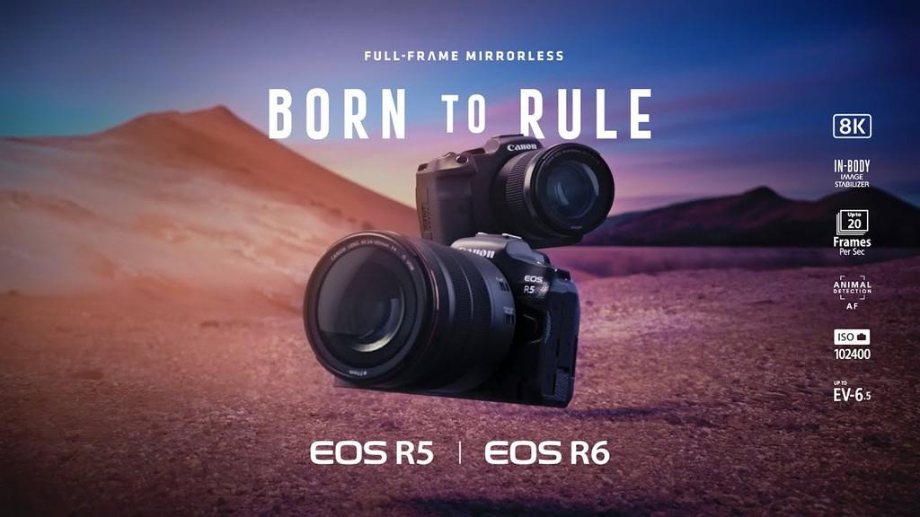 Canon EOS R6, máy ảnh không gương lật tốt nhất của Canon ? ảnh 4