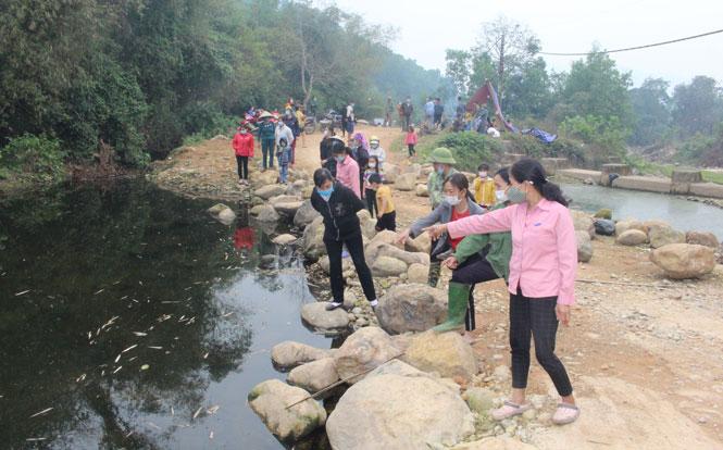 Hiện tượng cá chết nổi trên mặt suối và nước chuyển màu, bốc mùi tại suối Bờ Vai (Thái Nguyên), nơi ở gần một trang trại chăn nuôi. Ảnh: baothainguyen.vn