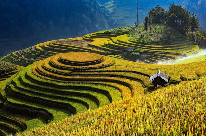 Kham pha danh thang ruong bac thang Mu Cang Chai-Hinh-5
