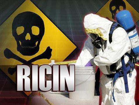 Cho đến bây giờ vẫn không có phương thuốc nào được cho là có thể giải độc được Ricin.