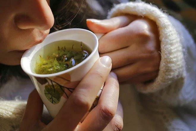 Thảo dược có tác dụng trị ho khan, đau họng.