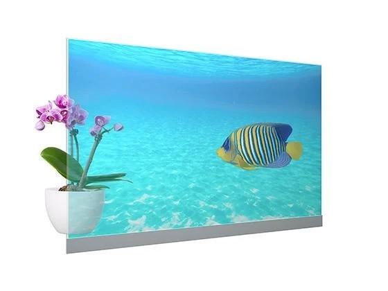 Panasonic ra mắt màn hình OLED trong suốt đầu tiên ảnh 1