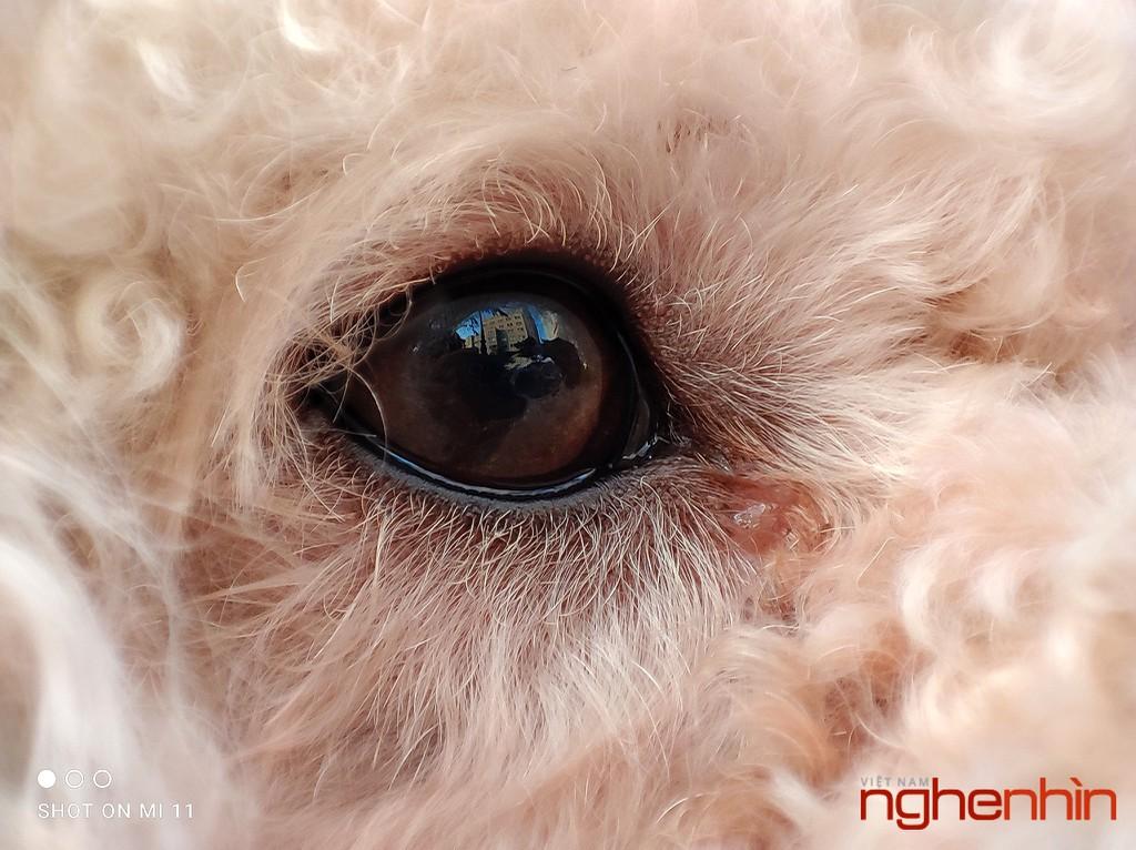 Trên tay Xiaomi Mi 11, trải nghiệm hệ thống camera nhiều nâng cấp mạnh mẽ ảnh 35