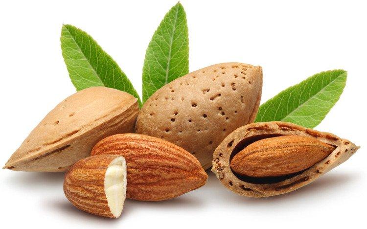 Hạt hạnh nhân giúp tăng lượng cholesterol tốt trong cơ thể, giảm nguy cơ mắc bệnh tim mạch.