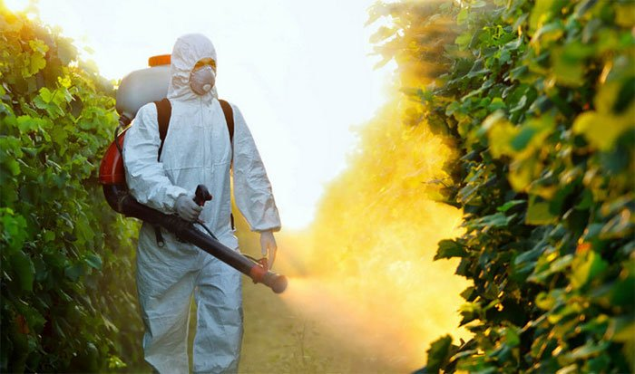 Liều lượng quyết định chất độc là một nguyên lý cơ bản của chất độc học.