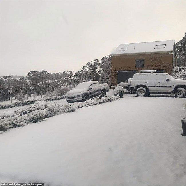 Ở nhiều khu vực núi cao, tuyết rơi dày hơn.