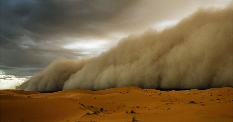 """Mỗi năm có khoảng 90 triệu tấn cát bụi Sahara được """"chuyển"""" tới Caribean."""