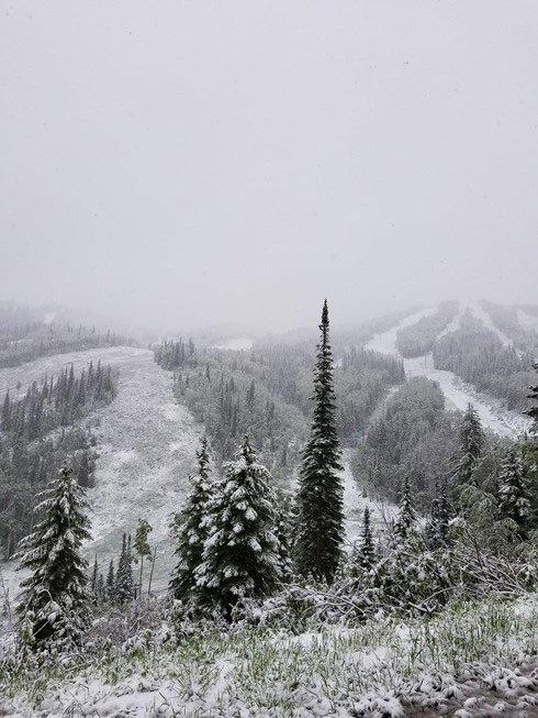 Nhiều khu vực tuyết phủ trắng xóa.
