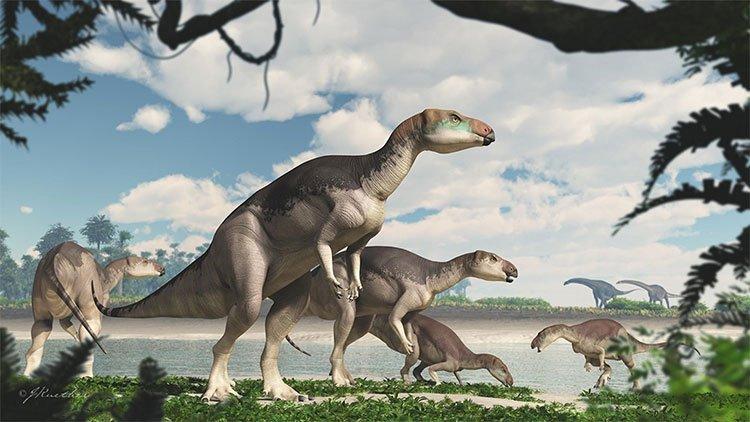 Khủng long Fostoria dhimbangunmal có thể dài tới 5 mét
