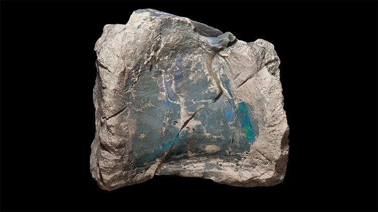 Một mẩu xương hóa thạch bị opal hóa.