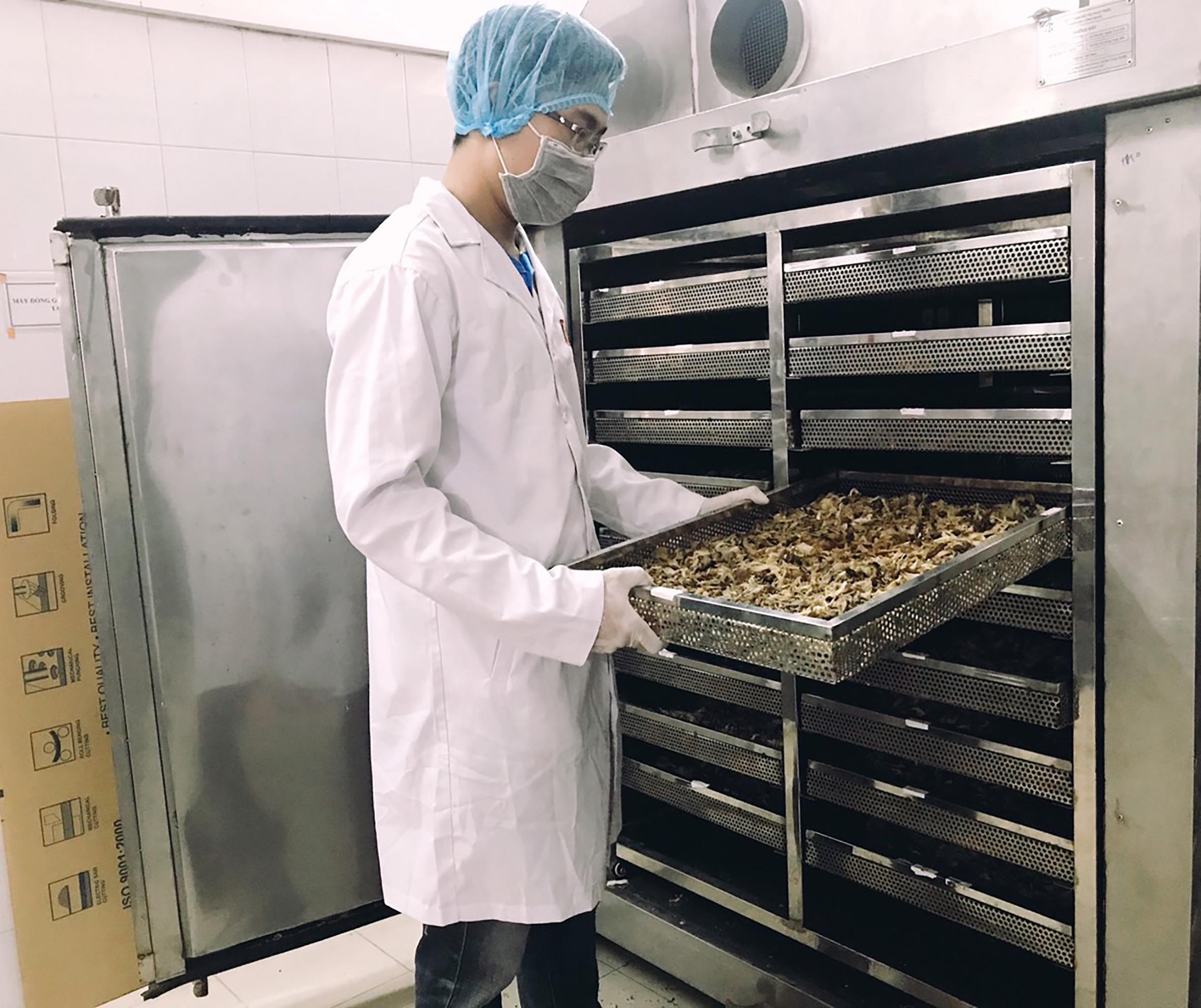 Chế biến nấm tại công ty Nấm lý tưởng, đơn vị được thụ hưởng tài trợ để chế biến lấy nấm làm nguyên liệu chính để tạo ra các sản phẩm sơ chế hoặc ăn liền nhằm khai thác triệt để giá trị của nấm. Hiện nay các sản phẩm nấm chế biến đã lên kệ siêu thị lớn như Big C, Aeon hay BRG.